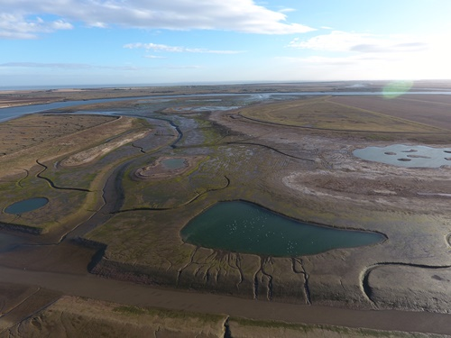 Wallasea  - aerial shot of site - Julibee marsh